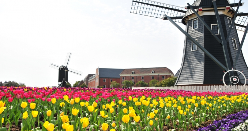 IMD世界競争力ランキング2018 オランダはヨーロッパで首位